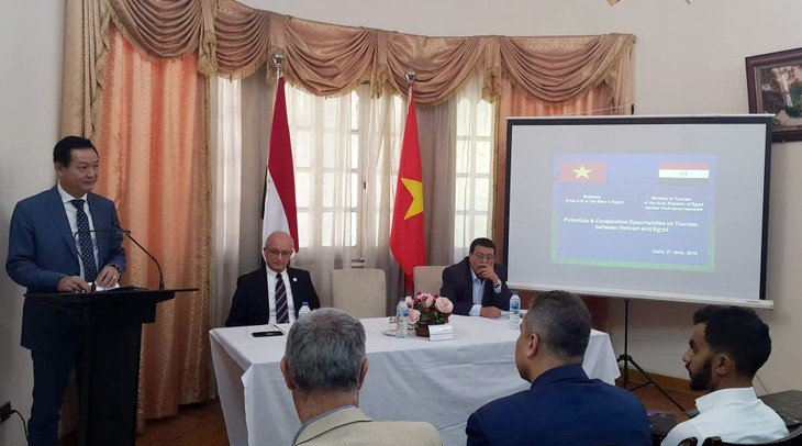 Promueven potencial turístico entre Vietnam y Egipto - ảnh 1