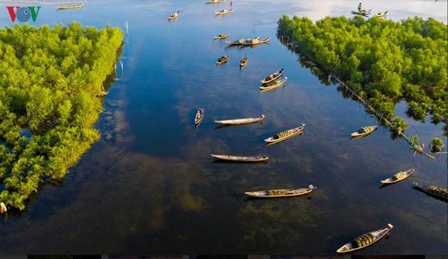 El encanto del pantano de Quang Loi - ảnh 10