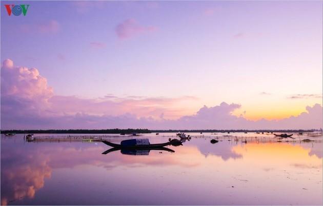 El encanto del pantano de Quang Loi - ảnh 11