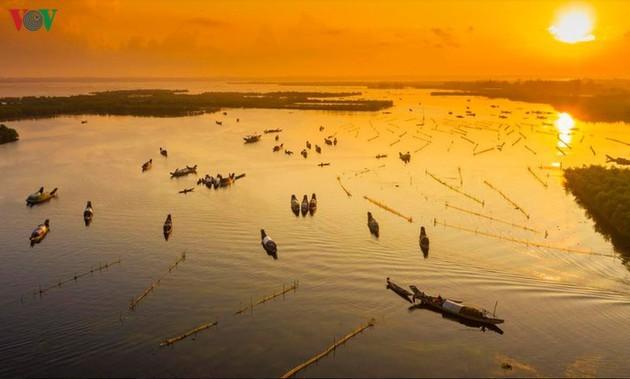 El encanto del pantano de Quang Loi - ảnh 2