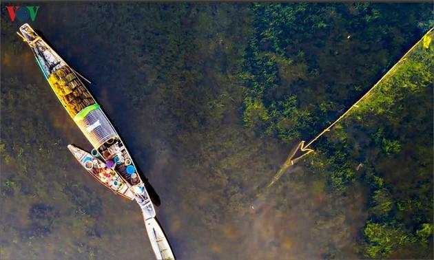 El encanto del pantano de Quang Loi - ảnh 6