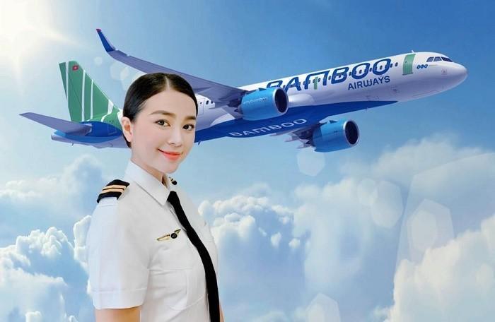 El dinámico desarrollo de las aerolíneas privadas de Vietnam - ảnh 1