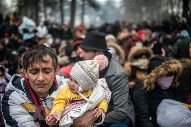 ONU llama a suavizar tensión en la frontera entre Turquía y Grecia - ảnh 1
