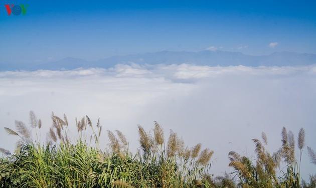A Pa Chai, extremo occidental de Vietnam  - ảnh 6
