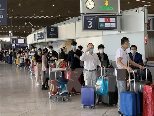 Repatrían a más de 280 ciudadanos vietnamitas varados en Europa - ảnh 1