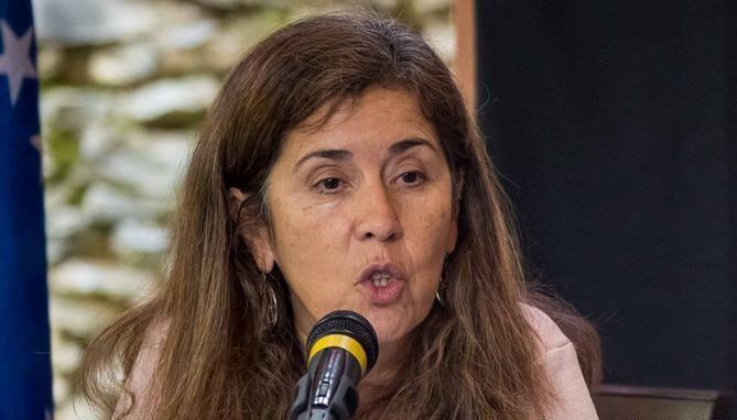 Venezuela abole decisión contra embajadora de la Unión Europea - ảnh 1