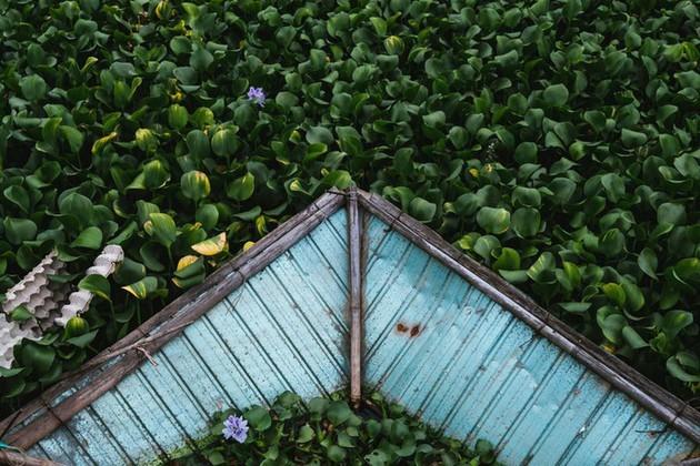 Vida cotidiana de los habitantes del centro de Vietnam a través de los ojos de un fotógrafo japonés - ảnh 2