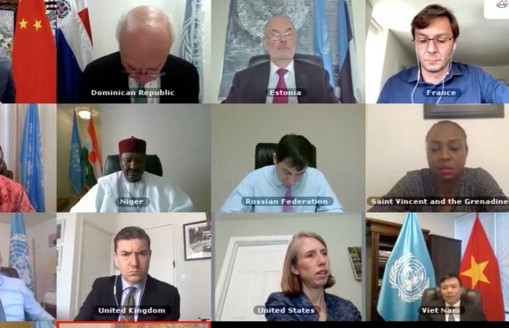 Vietnam apoya soluciones diplomáticas y preventivas para resolver conflictos en África Occidental y el Sahel - ảnh 1