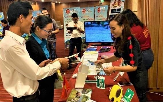 Da Nang y Dak Lak cooperan por recuperar el turismo local - ảnh 1