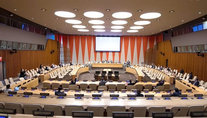 Cuba pospone la resolución contra el embargo en las Naciones Unidas - ảnh 1