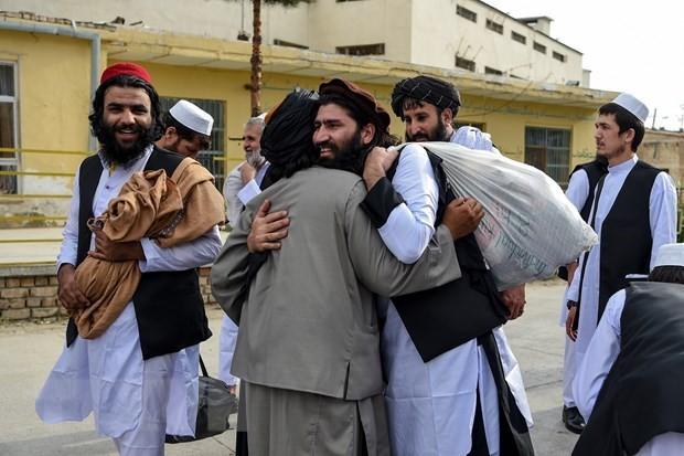 Vietnam respalda el proceso de paz integral en Afganistán - ảnh 1