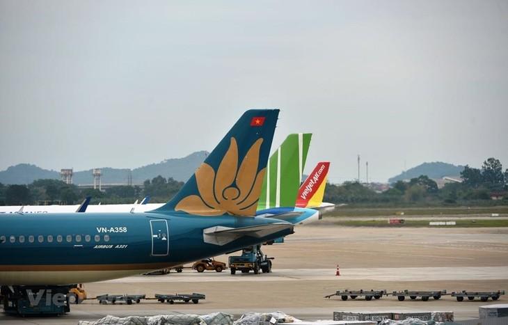 Se reanuda el transporte en Da Nang  - ảnh 1