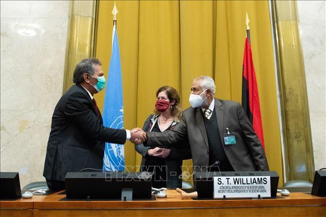 Alcanzan en Libia un permanente acuerdo de alto el fuego  - ảnh 1