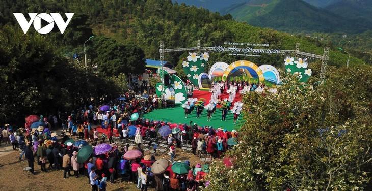 Binh Lieu en la temporada blanca de la camellia oleifera - ảnh 5