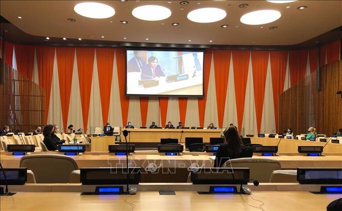 Expertos internacionales aprecian el papel activo de Vietnam en el Consejo de Seguridad de la ONU - ảnh 1