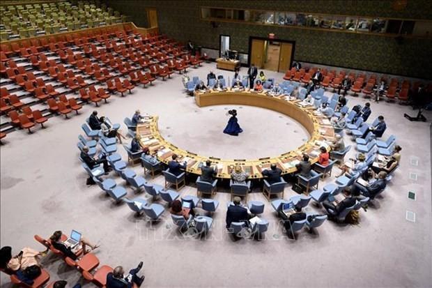Vietnam pide resolver desafíos de seguridad en África Occidental y el Sahel - ảnh 1