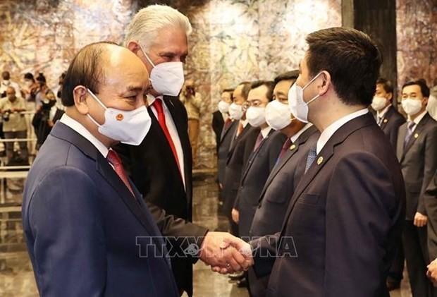 Impulso a la cooperación entre los Partidos Comunistas de Vietnam y Cuba - ảnh 1
