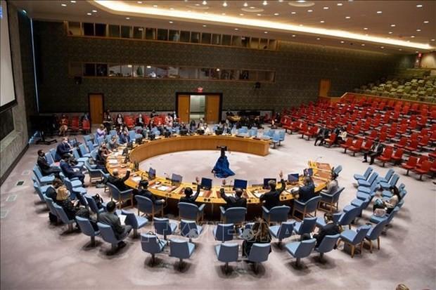 Vietnam repudia el uso de armas químicas en Siria - ảnh 1