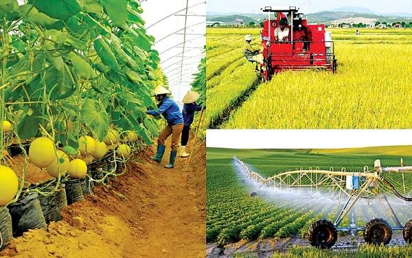 Celebran conferencia sobre la asociación de desarrollo de agricultura sostenible de Vietnam  - ảnh 1