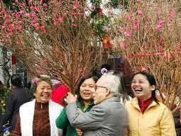 越侨欢欢喜喜回国过大年 - ảnh 2