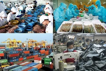 比利时经济专家:越南经济积极发展  投资环境极具吸引力 - ảnh 1