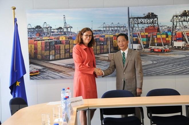 越南与伙伴的经济合作前景 - ảnh 2