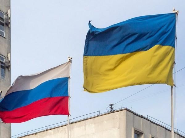 普京签署命令对乌克兰采取经济限制措施 - ảnh 1