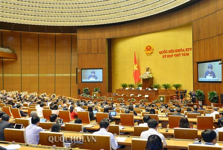 国际社会高度评价越南国会通过《劳动法修正案》 - ảnh 1