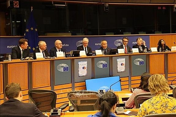 欧洲议员了解EVFTA 和EVIPA相关信息 - ảnh 1