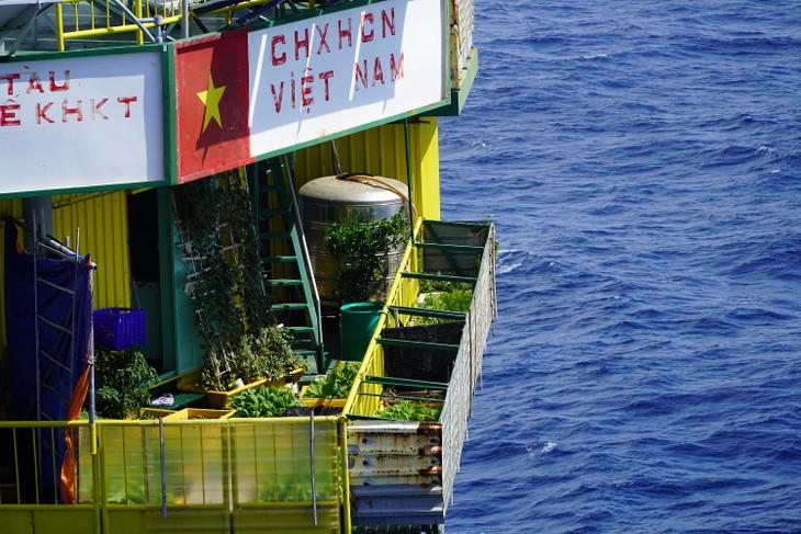 在DK 1海上高脚屋种菜 - ảnh 1
