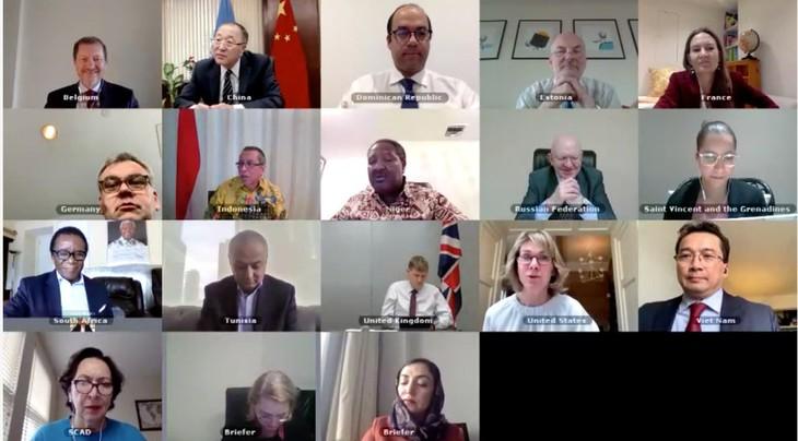 联合国安理会举行视频会议讨论阿富汗局势 - ảnh 1