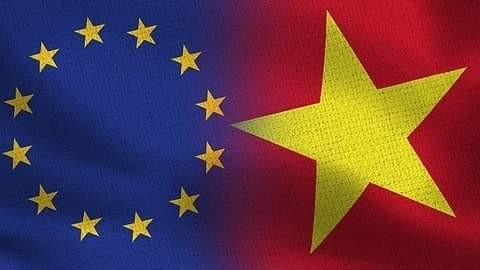 面向《越欧自贸协定》生效的重要步骤 - ảnh 1