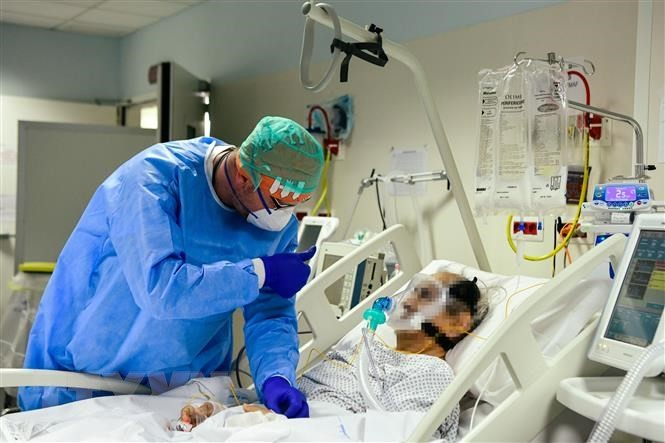 世界各国卫生界正积极研究应对新冠病毒 - ảnh 1