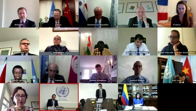 联合国安理会讨论哥伦比亚和平协议落实情况 - ảnh 1
