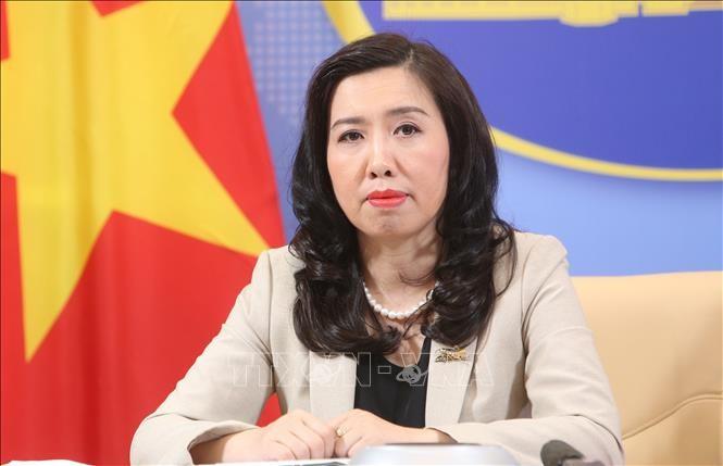 越南关注并注视东盟一些国家海上复杂局势 - ảnh 1