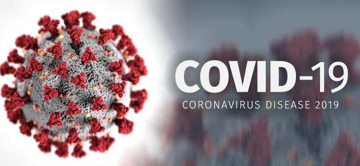 世卫组织:新型冠状病毒起源自动物的可能性较高 - ảnh 1