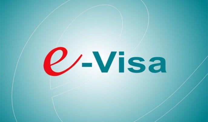 向80个国家公民 签发电子签证 - ảnh 1