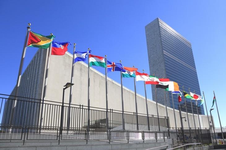 世界各国领导人将不赴美出席第75届联合国大会 - ảnh 1