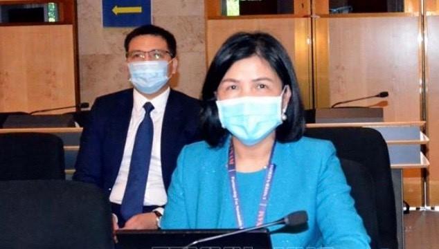 联合国人权理事会举行第44次会议 - ảnh 1