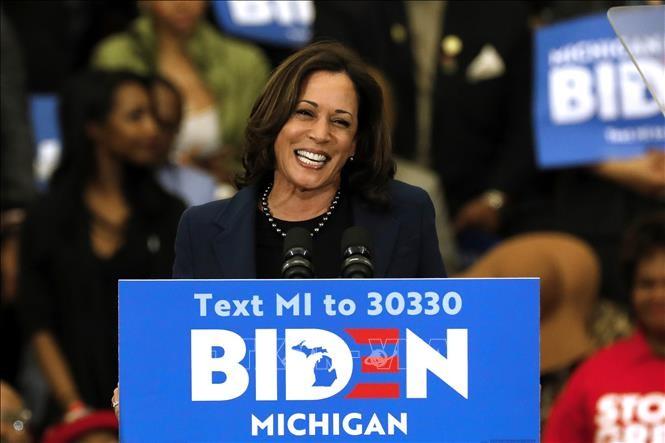 美国总统大选:拜登宣布选择哈里斯作为竞选搭档 - ảnh 1
