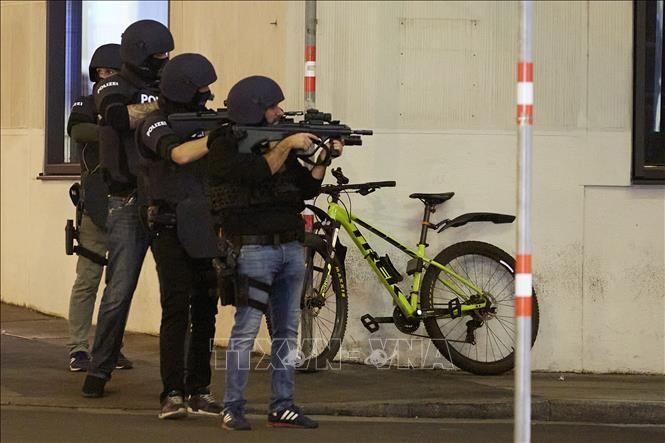 """奥地利枪击案:""""伊斯兰国""""宣称负责 - ảnh 1"""