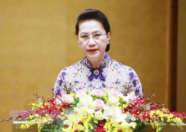 越南14届国会:为业已取得的成果而自豪     - ảnh 2