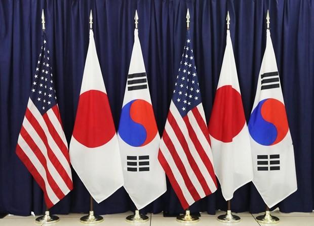 韩国青瓦台国家安保室室长徐薰抵达纽约出席韩美日国安首长会议 - ảnh 1