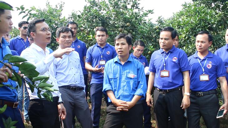 Peranan Pemuda dalam Memupuk Hubungan Persahabatan dan Solidaritas Istimewa Vietnam-Laos - ảnh 1
