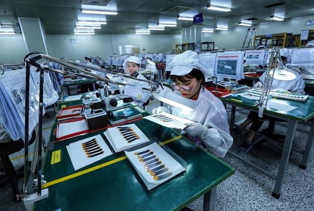 越南国内生产总值预计增长3.5%到5.5% - ảnh 1