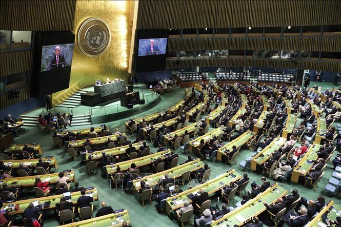 阿富汗驻联合国代表团退出联大会议发言 - ảnh 1