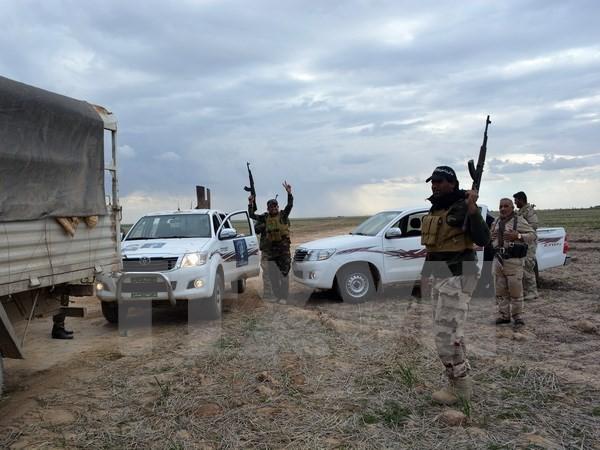 Les forces irakiennes cherchent à briser les lignes jihadistes à Hawija - ảnh 1