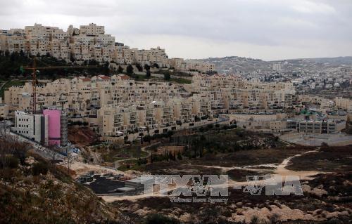 La Jordanie appelle l'ONU à agir contre le projet d'annexion d'une partie de la Cisjordanie  - ảnh 1
