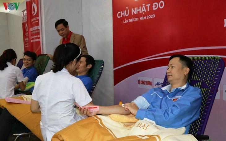 Donner son sang pendant la fête du Têt - ảnh 1