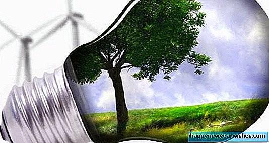 Oeuvrons ensemble pour économiser l'énergie - ảnh 1